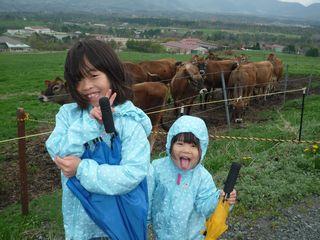 牛と娘たち